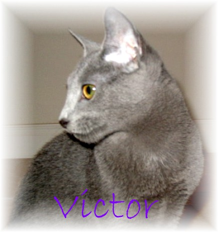 Victor at 5 months old